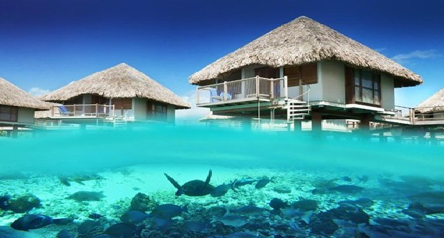 Gay destination wedding resort top gay destination wedding le mridien bora bora junglespirit Choice Image